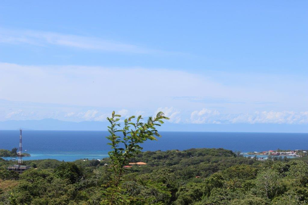 26.183 Acres Ocean View Land near Fantasy Island, Roatan