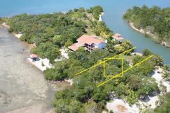 lot #205 Marina Parrot Tree Plantation
